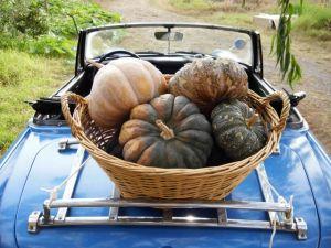 farm car