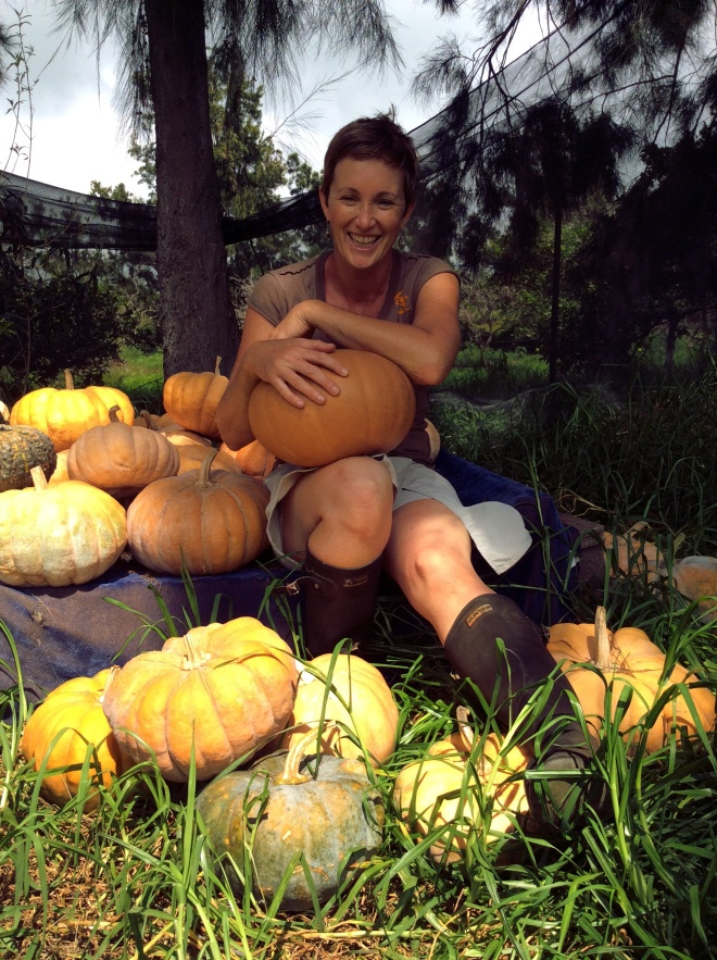 Sitting amid the pumpkin bounty