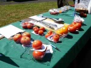 tomato tasting station