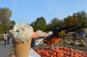pumpkin seed ice cream